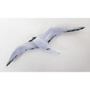 Painted ~ Arctic Tern ~ Refrigerator Magnet ~ BP088M