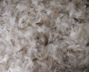 Craft Goose Down 10/90 Pillow Feathers - Natural - 0.2kg