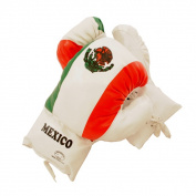 Defender Mexican 470ml Boxing Gloves