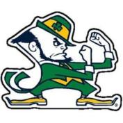 Notre Dame Fighting Irish Magnet