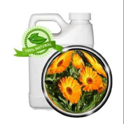 CALENDULA Oil Extract - 950ml - anti-inflammation, wound healing, dry cracked skin, juvenile acne, sunburn, sprains
