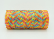 VARIEGATED FIESTA 0.6mm 100% Nylon Twisted Cord Thread Micro Macrame Beading Knitting Crochet Needle Crafts