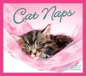 Cal 2017-Cat Naps