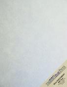 50 Light Blue Old Age Parchment 60# Paper Sheets - 22cm X 28cm (22cm X 28cm ) Standard Letter|Flyer Size - 27kg/pound Text/Copier/Printer Weight - Vintage Coloured Old Parchment Semblance