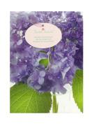 Hydrangea Gift Bag, 4 x 25cm x 18cm