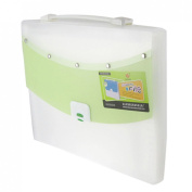 Hand Carry 13 Compartment White Green Plastic File Document Bag