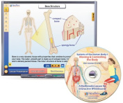 NewPath Learning Systems of The Human Body I Multimedia Lesson, Single Building Site Licence, Grade 6-10