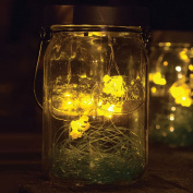 Solar Firefly LED Glass Lantern - Flickering Lightning Bug Mason Jar Light