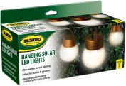 JB6638 Hanging Solar LED Lights Copper and Frosted
