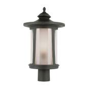 Trans Globe Lighting 40043 BK 1-Light Post Lantern, Black
