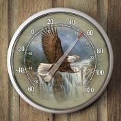 Bald Eagle Thermometer by Rosemary Millette