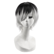 Andao Wig Stores Short Pixie Wigs Good Quality Hairpieces Be3061