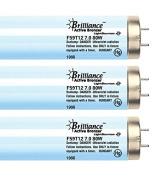 Brilliance Active Bronzer F59 80W 7.0% Bi-pin Tanning Lamp