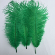 Generic 10-12inch 25-30cm Ostrich Feather Home Decoration DIY Craft Pack of 10