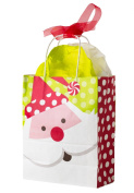Festive Holiday Presents Santa 4pc 25cm Gift Bag Red/Green/White