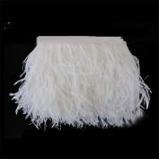 Lanshi Ostrich Feathers Trims Fringe with Satin Ribbon Tape for Dress Sewing Crafts Costumes Decoration Pack of 2 Yards