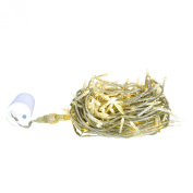 20m Novelty Bulb 200 Soft White LED Wedding Battery Operated String Lights with 6-hour Timer