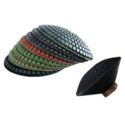 10cm Diamond Convex Polishing Pads Set of 8 PCS and Convex Back Holder For Concave Sinks or Ogee Edges