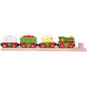 Bigjigs Toys Rail Dinosaur Train