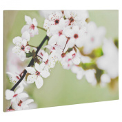 Large Canvas Wall Art Photos & Prints - Choice of Styles
