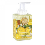 Lemon Basil Foaming Hand Soap from FND Promotion by Michel Design Works