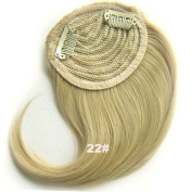#22 Synthetic Hair Clip In/On Side Hair Fringe/Bangs