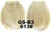 #613 100% High Temperature Synthetic Fibre Clip In/On Front Hair Fringe Hair Bangs