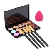 Susenstone 15 Colours Contour Concealer Palette + 4pcs Powder Brushes +Sponge Blender