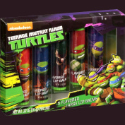 Nickelodeon Teenage Mutant Ninja Turtles Flavoured Lip Balms 5 pc