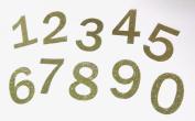 Gold Glitter Numbers Die Cuts 0-9