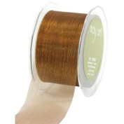 5.1cm Wide Ribbon Copper Sheer Pinstripes