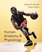 Human Anatomy & Physiology, Books a la Carte Edition, Modified Masteringa&p with Pearson Etext & Valuepack Access Card, Human Anatomy & Physiology Laboratory Manual, Fetal Pig Version, Books a la Carte Edition, Get Ready for A&p