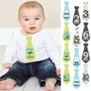 Dashing Little Man Moustache Party - Monthly Baby Tie Sticker Set - Necktie 12 Piece