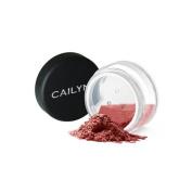 Mineral Eyeshadow Powder - #006 Modern Mauve, 2.35g0ml