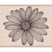 Hero Arts Mounted Rubber Stamps 10cm x 2.5cm -Etched Daisy