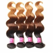 ALI JULIA Brazilian Ombre Body Wave Hair Weave 4 Bundles 7A 100% Human Hair Extensions 95-100g/pc