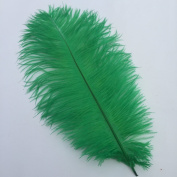 12-14inch 30-35cm Natural Ostrich Feather Wedding Party Decoration Pack of 10