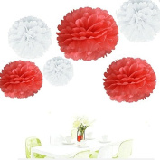 Since . 12Pcs of 20cm 25cm 36cm 3 Colours Mixed White and Coral Tissue Paper Flowers, Tissue Paper Pom Poms, Wedding Decor, Party Decor, Pom Pom Flowers, Tissue Paper, Tissue Paper Flowers Kit, Pom Poms Craft, Wedding Pom Poms, Pom Poms Decoration