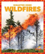 Wildfires (Disaster Zone)