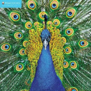 Peacocks wall calendar 2017