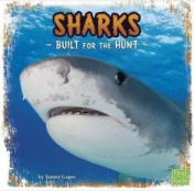Sharks: Built for the Hunt (First Facts