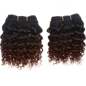 Emmet Short Curly Hair Extension 20cm Easy Installing & Sewing Ombre Colours Brazilian Human Hair Can be Dyed and Permed Afro Kinky Weave 2Bundles/lot 50g/Bundle