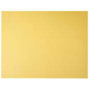 Project Card Bright Yellow 510mm x 640mm