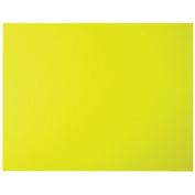 Project Card Neon Yellow 510 x 640mm
