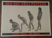 RED HOT CHILI PEPPERS - Blood Sugar Sex Magik [POSTER]