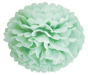 (12pcs) Mint Mixed Size Tissue Paper Pom Poms Lanterns Decorations