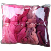 Living Dreams DISCOUNT PACK 150ml Hand Dyed Gradient BFL Wool Top Roving. Pre-Drafted Super Soft Lustrous Fibre for Spinning, Felting and Blending. 5 Colours, Pinks