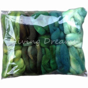 Living Dreams DISCOUNT PACK 150ml Hand Dyed Gradient BFL Wool Top Roving. Pre-Drafted Super Soft Lustrous Fibre for Spinning, Felting and Blending. 5 Colours, Greenery