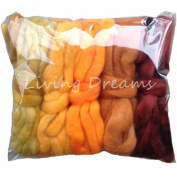 Living Dreams DISCOUNT PACK 150ml Hand Dyed Gradient BFL Wool Top Roving. Pre-Drafted Super Soft Lustrous Fibre for Spinning, Felting and Blending. 5 Colours, Harvest