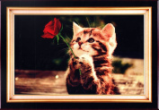 Home Decoration 5D DIY Printed Needlework Sets Counted Cross Stitch Kits Embroidery Kits, Kitty's love